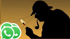 snoop into someone else's whatsapp account