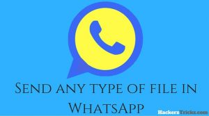 Send any type of file in WhatsApp